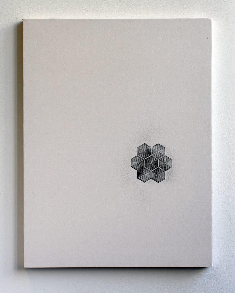 jiba_hexagonal1